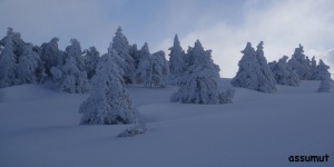 Domingo tras la nevada.